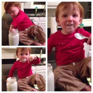 The bear loves mommy's homemade gluten/dairy/sugar-free coconut milk yogurt!